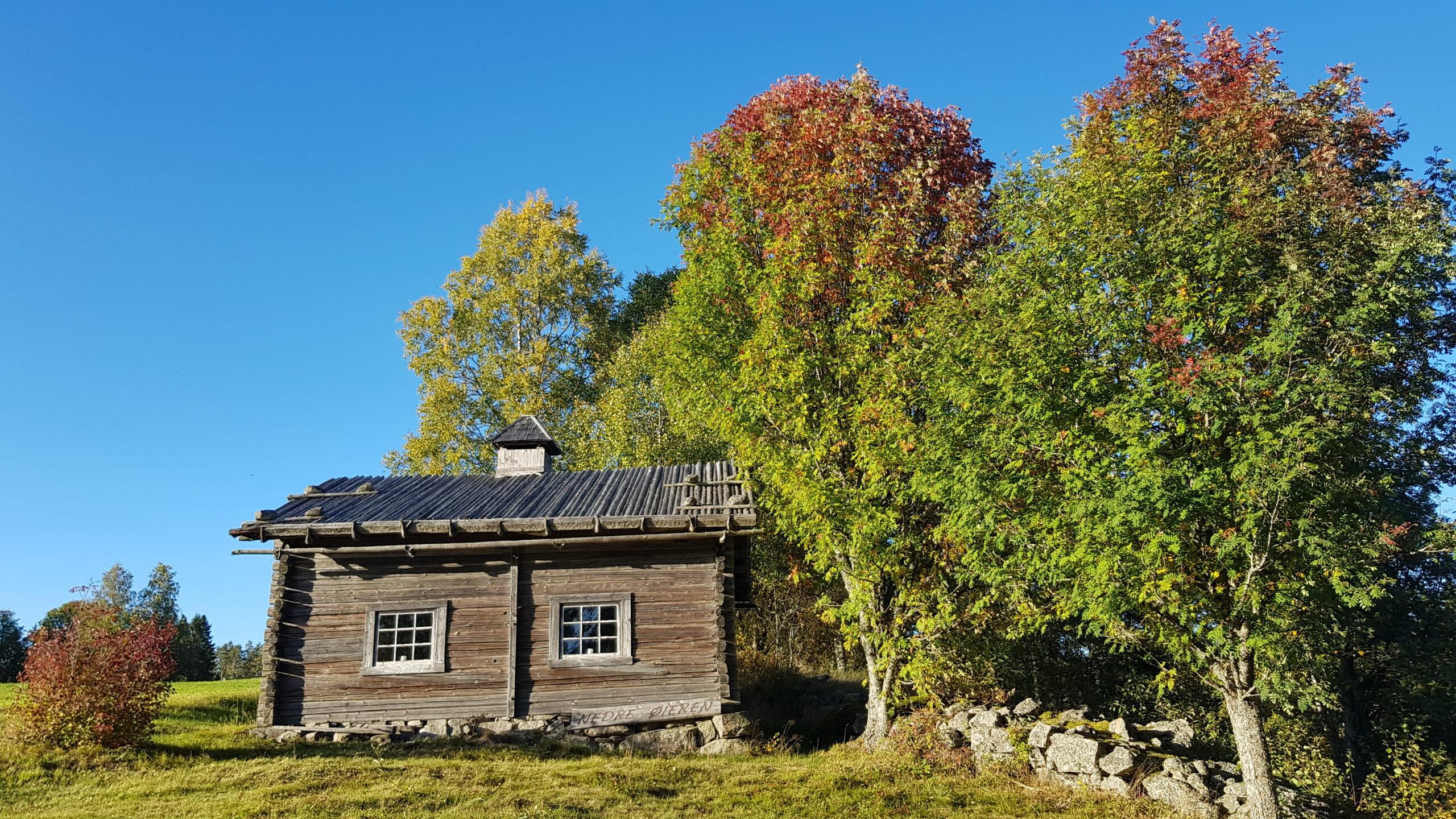 Badstua med en snev av høstfarger20200918