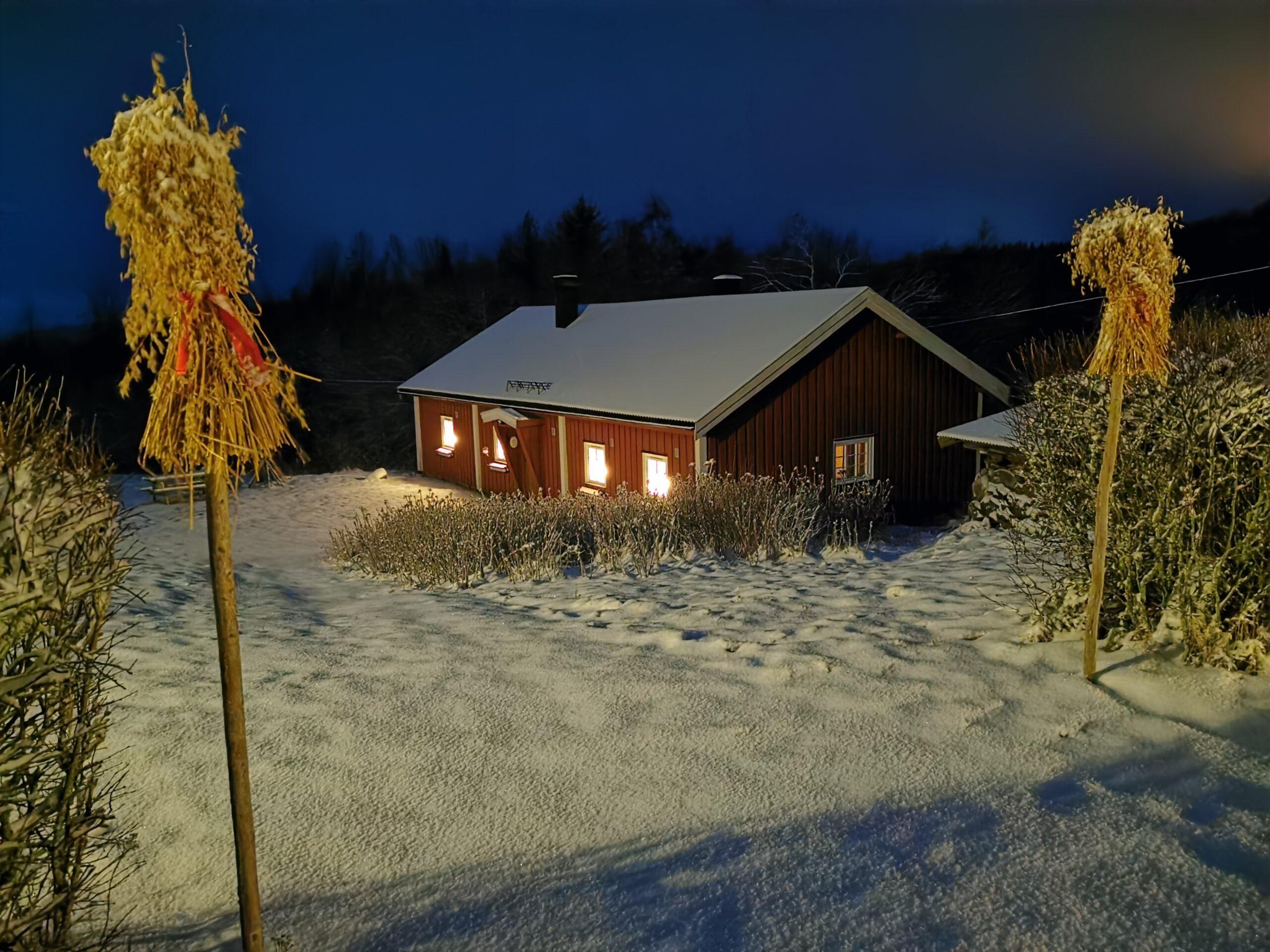 IMG_20201226_Fjøset jul 2020